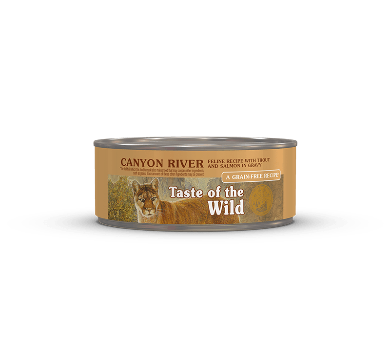 Canyon River Can Feline Formula   Taste of the Wild